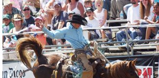 1_Sports-Photo-Lakeside Rodeo.jpg