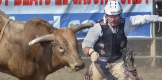 1_Sports-Photo-Lakeside Rodeo pays big.jpg