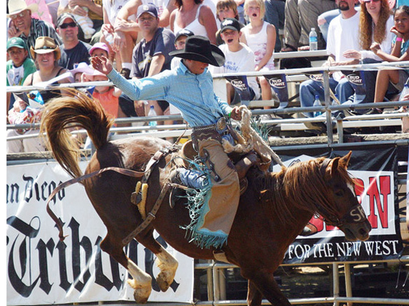 1_Sports-Photo-Lakeside Rodeo.jpg