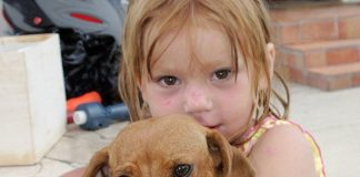 1-pet adoptions for families.jpg