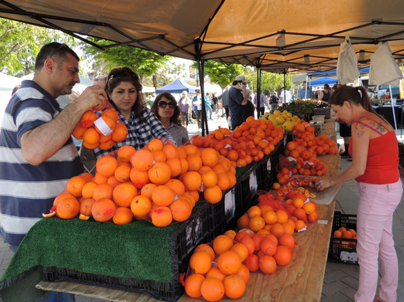 Farmers Market Oranges.jpg