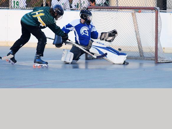 WEBHockey.jpg
