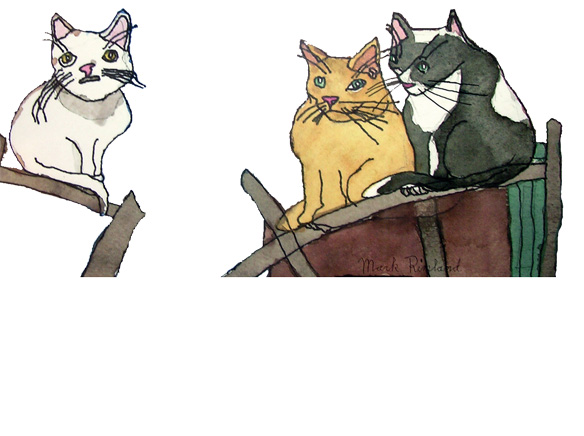 WEBalleycat-background.jpg